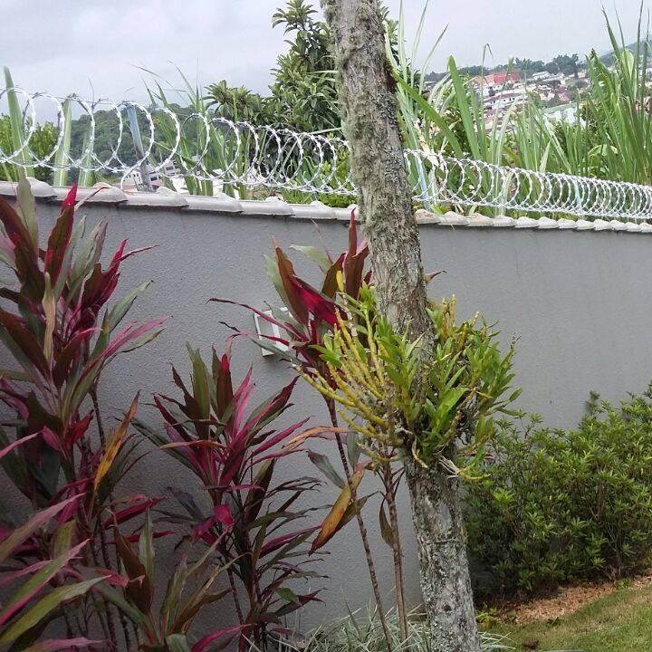 Ponteiras e Concertinas para muros